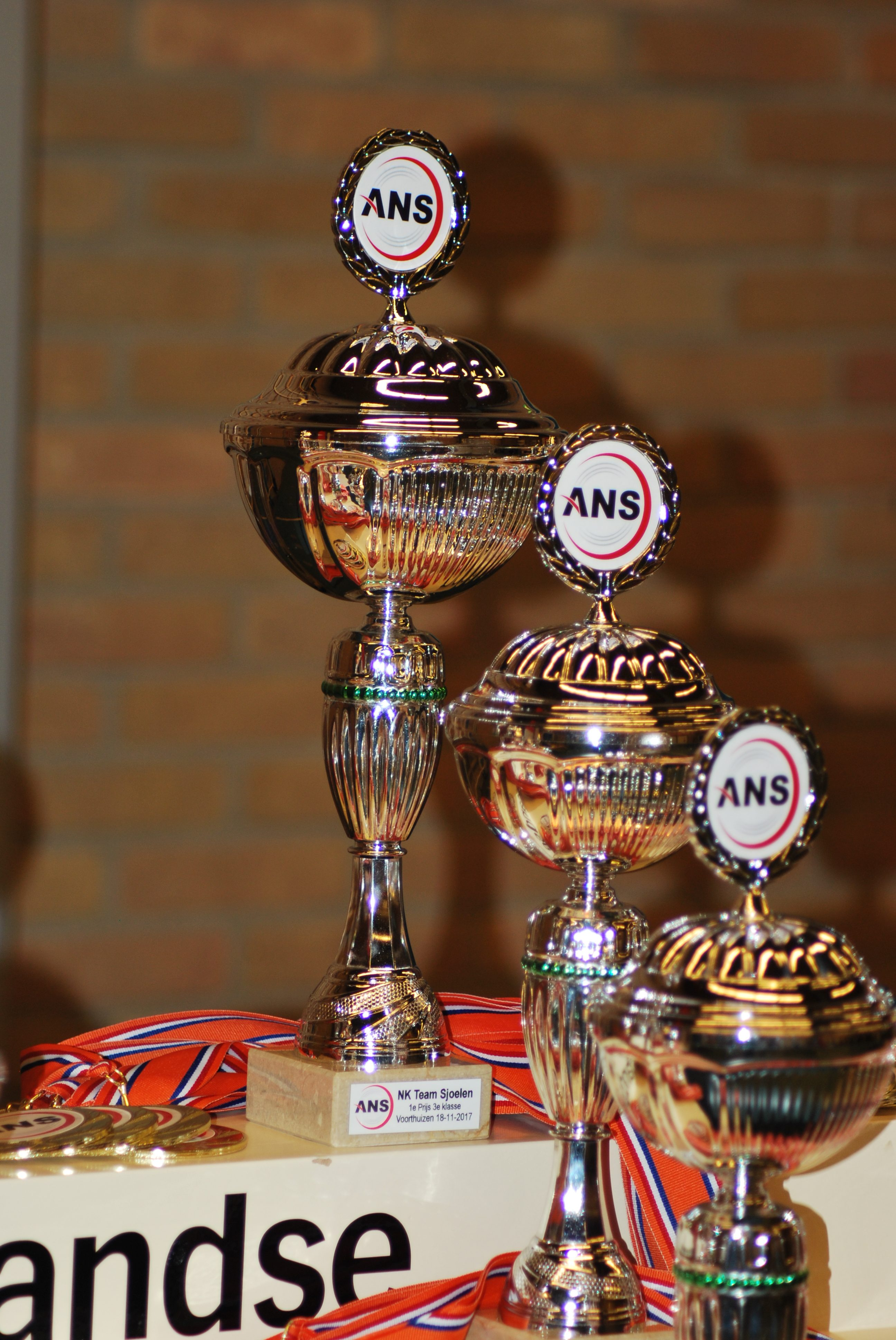 NK-teamsjoelen-18-11-2017 (9)